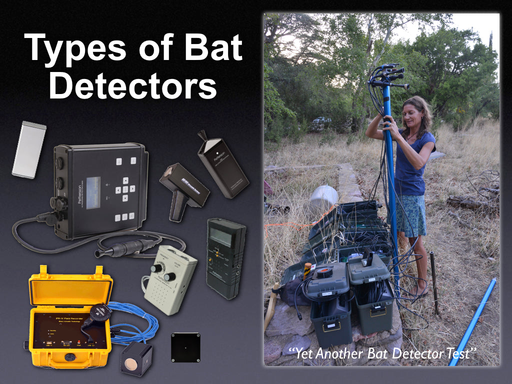 Types of Bat Detectors