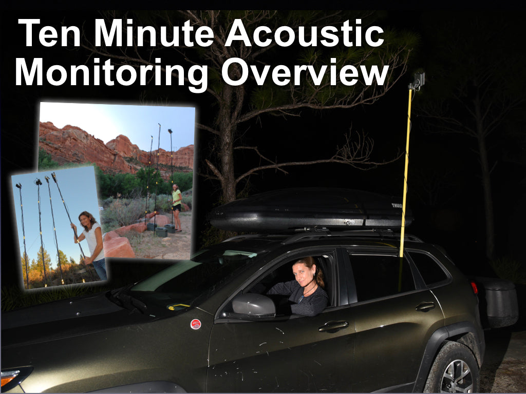 Ten Minute Bat Acoustic Monitoring Overview