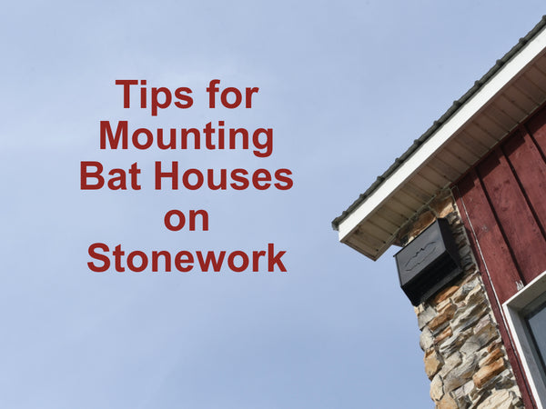How to Mount a Bat House on Stonework