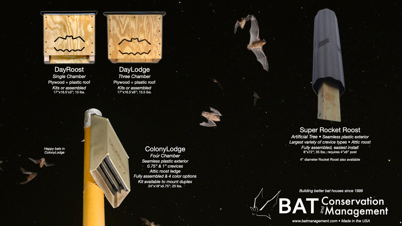 Bat House Buying Guide