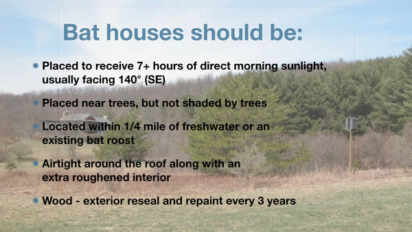 Description of how to properly situate a bat house to lower the cost of bat management.