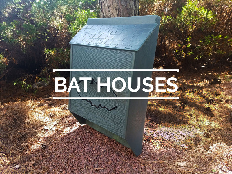 Bat Conservation and Management – Bat Conservation and