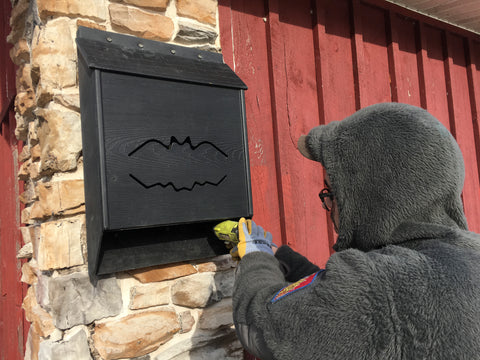Installing a bat house on stonework
