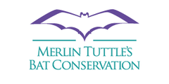 Merlin Tuttle's Bat Conservation