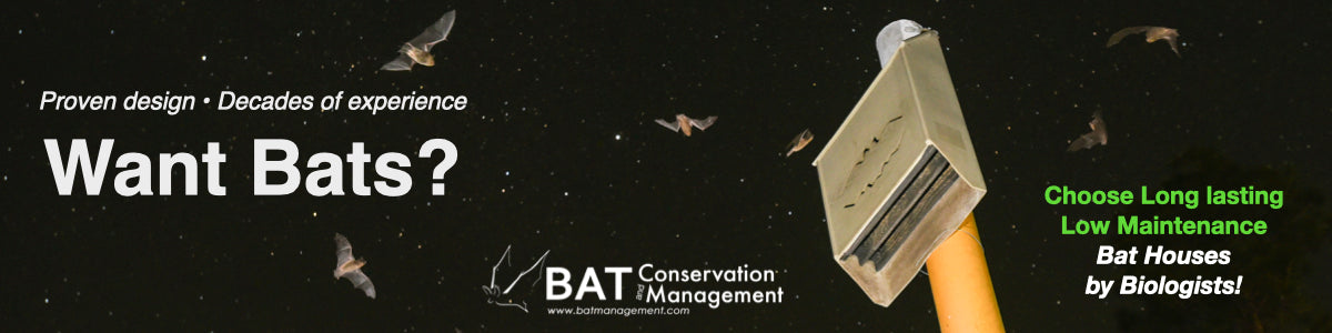 Best bat house by Bat Conservation and Management