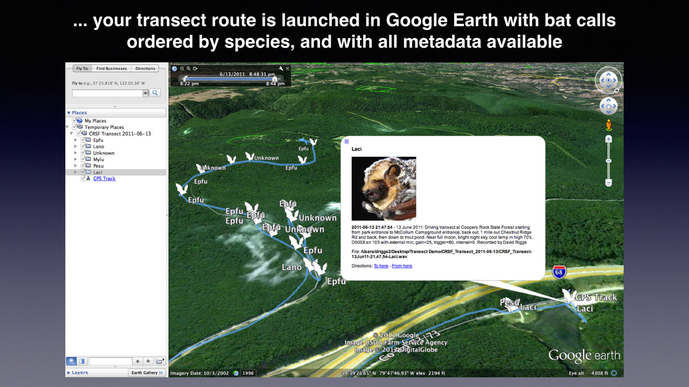 Transect - App for Visualizing Mobile Transect Data – Bat