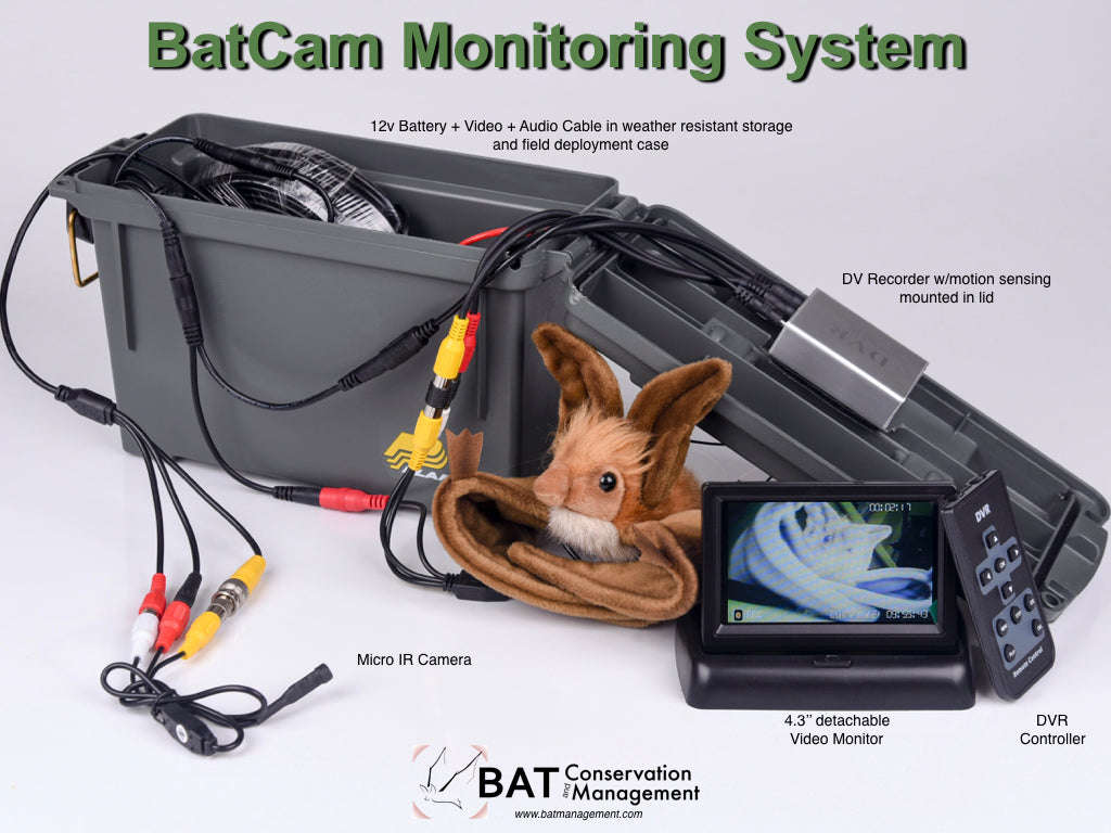 BatCam Remote Monitoring Kit