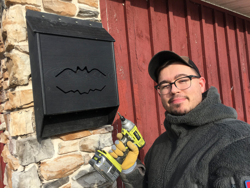 Bat House Installation