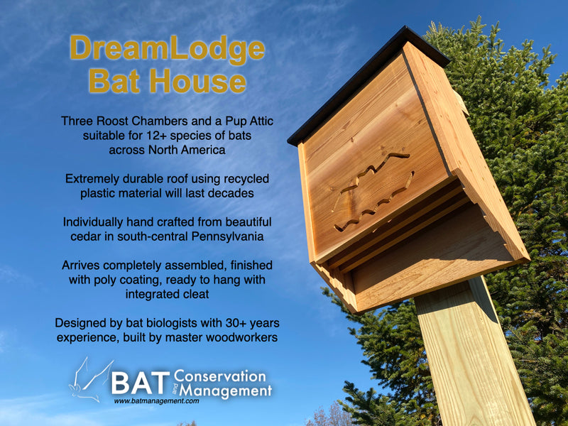 DreamLodge  - Finished Three Chamber Cedar Bat House