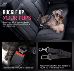 Tailup Vehicle Safety Harness