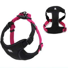 Truelove Discovery Halting Harness