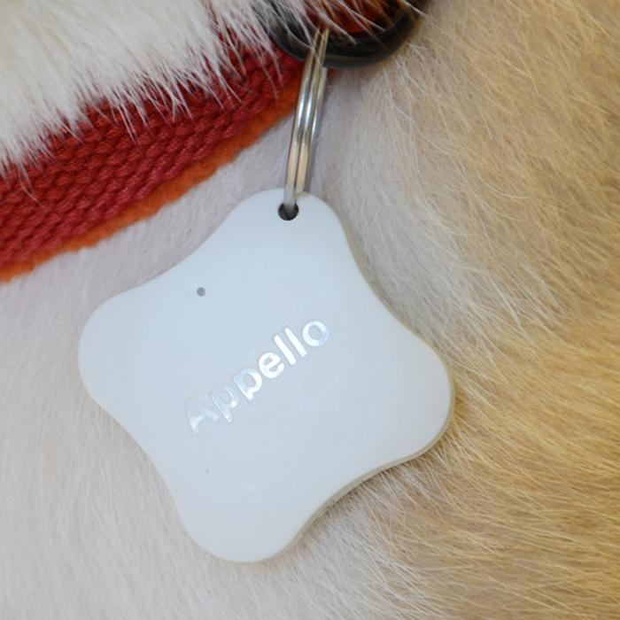 Waterproof Real Time Anti-lost GPS Pet Tracker