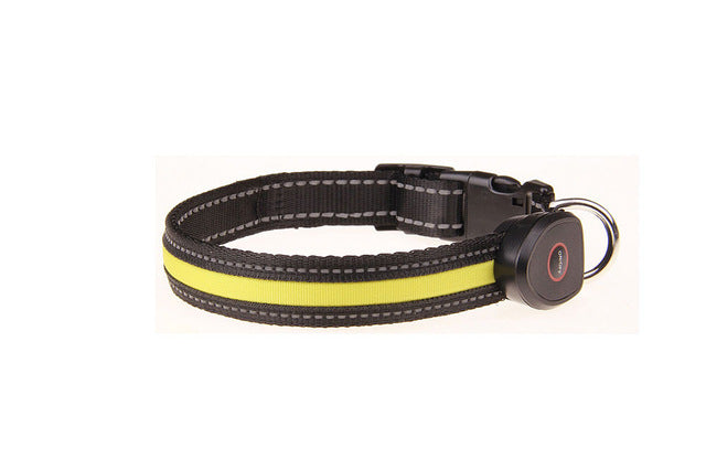 Tailup LED Safety Collar