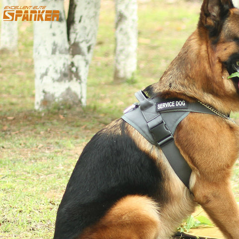 Spanker Service Tactical Harness