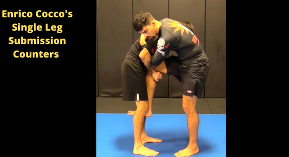 Enrico Cocco's Single Leg Submission Counters