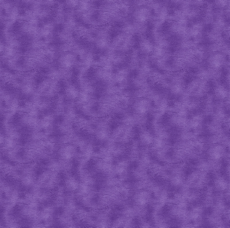 Equipoise 120-20012 Purple