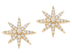 Elizabeth and James signature compass rose stud earrigns