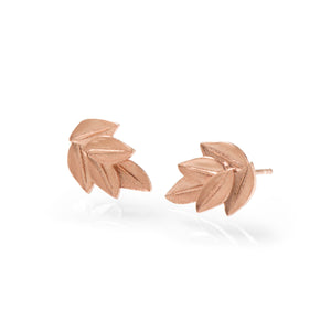 Five Leaf Acacia Studs Rose Gold