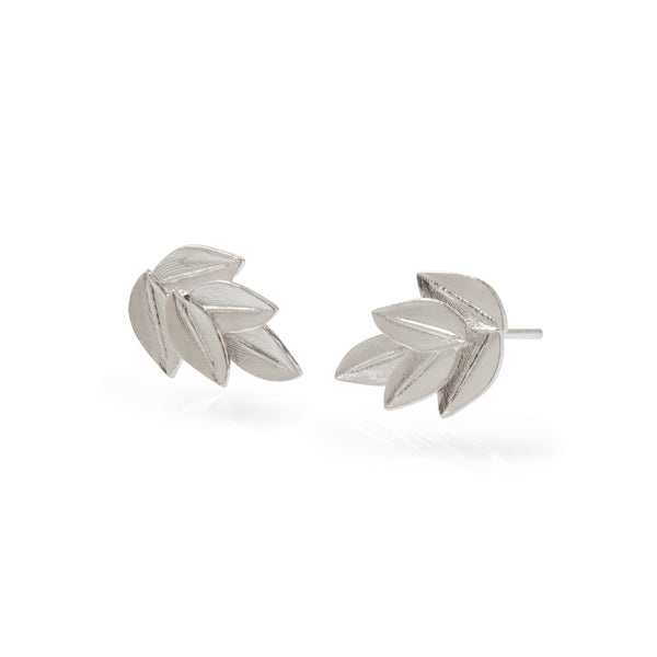 Five Leaf Acacia Studs Sterling Silver