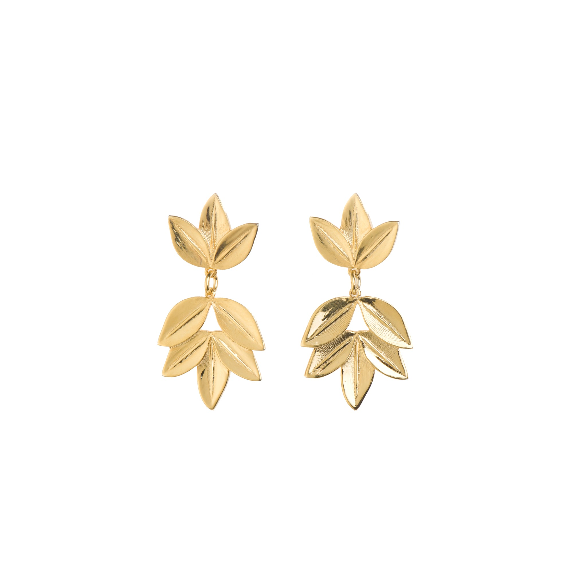 Eight Leaf Acacia Studs