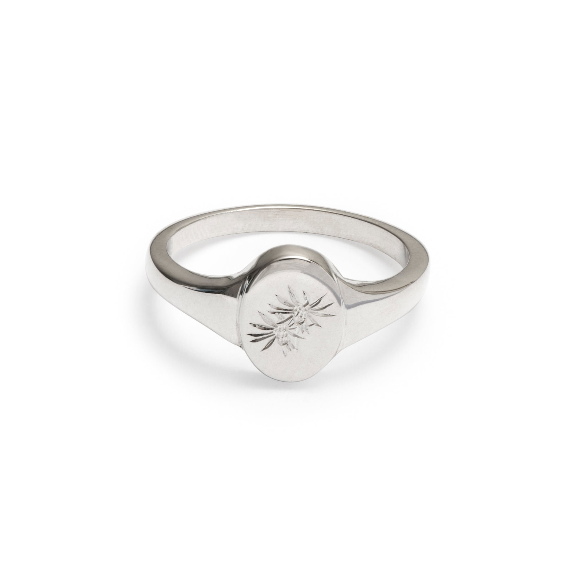 Felicia filifolia Wild Flower Signet Ring Sterling Silver