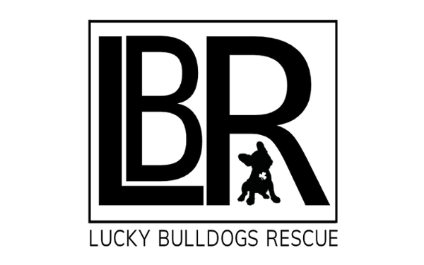 Lucky Bulldogs Rescue - Rescue of the Month, February 2020