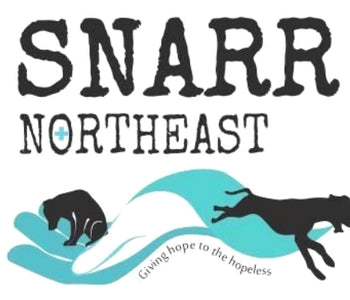 SNARR Northeast - Rescue of the Month, December 2018