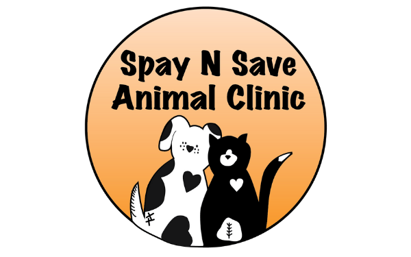 Spay N Save - Rescue of the Month, April 2019