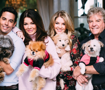 The Vanderpump Dog Foundation - Rescue of the Month, June 2018