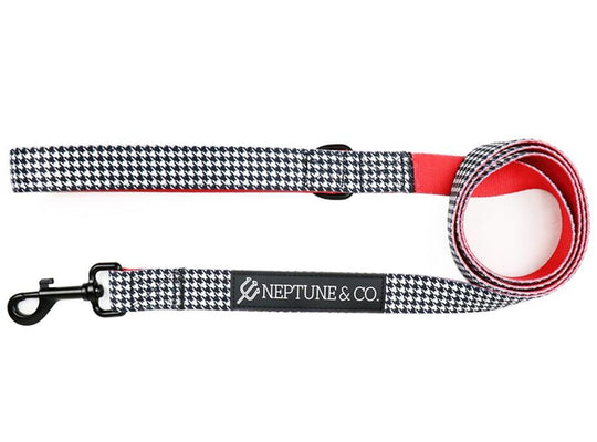Release The Houndstooth Leash - Neptune & Co.