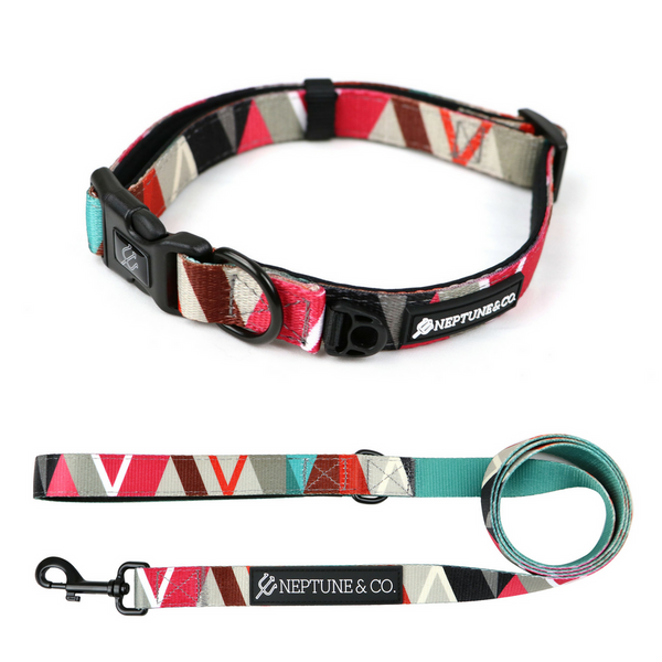 Geomuttric Collar and Leash Set - Neptune & Co.