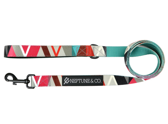 Geomuttric Leash - Neptune & Co.