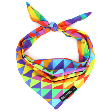 We've Got Pawride Bandana - Neptune & Co.