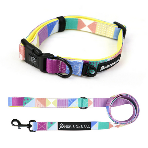 Pastel Pooch Collar and Leash Set - Neptune & Co.