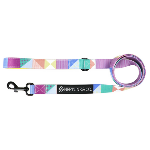 Pastel Pooch Leash - Neptune & Co.