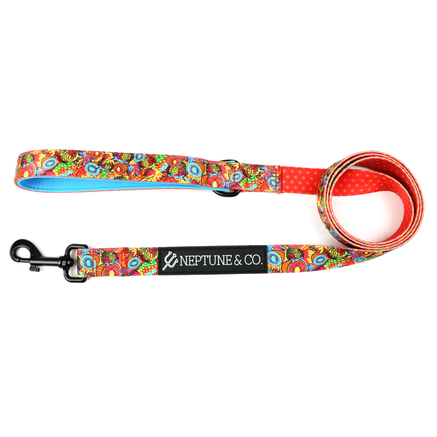 Pup Art Leash - Neptune & Co.