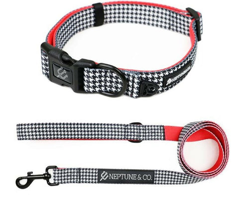 Release The Houndstooth Collar and Leash Set - Neptune & Co.