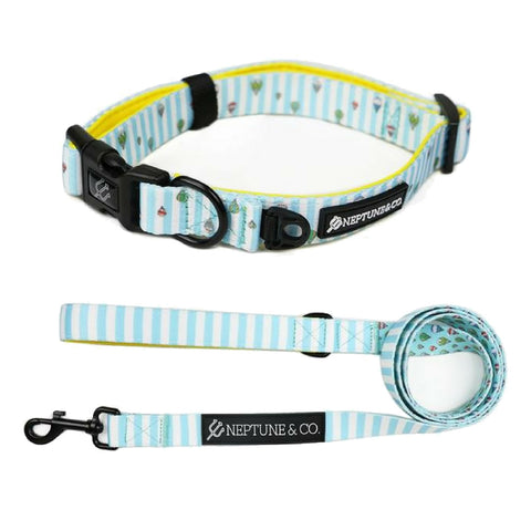 Up High Collar and Leash Set - Neptune & Co.