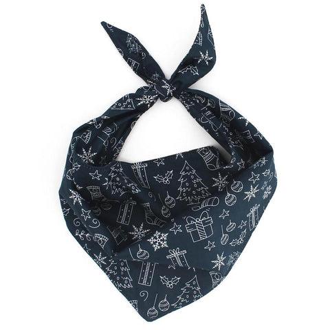 Winter Wonderland Bandana - Neptune & Co.