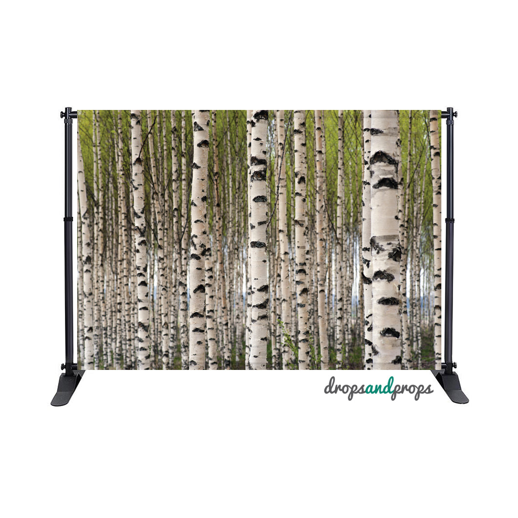 Birch Trees Photography Backdrop