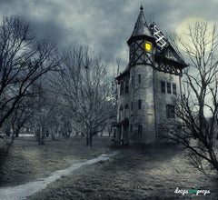 Scary Mansion Photography Backdrop