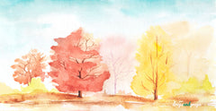 Watercolor Autumn Trees Photography Backdrop