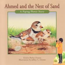 Nimbus Books Children's Book-Ahmed and the Nest of Sand