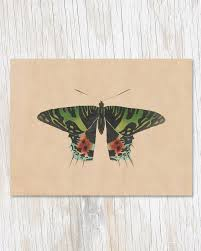 Cognitive Surplus Blank Card-Vintage Butterfly