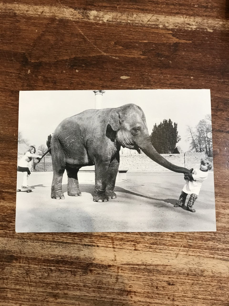 Retrospect Card-Child with Elephant