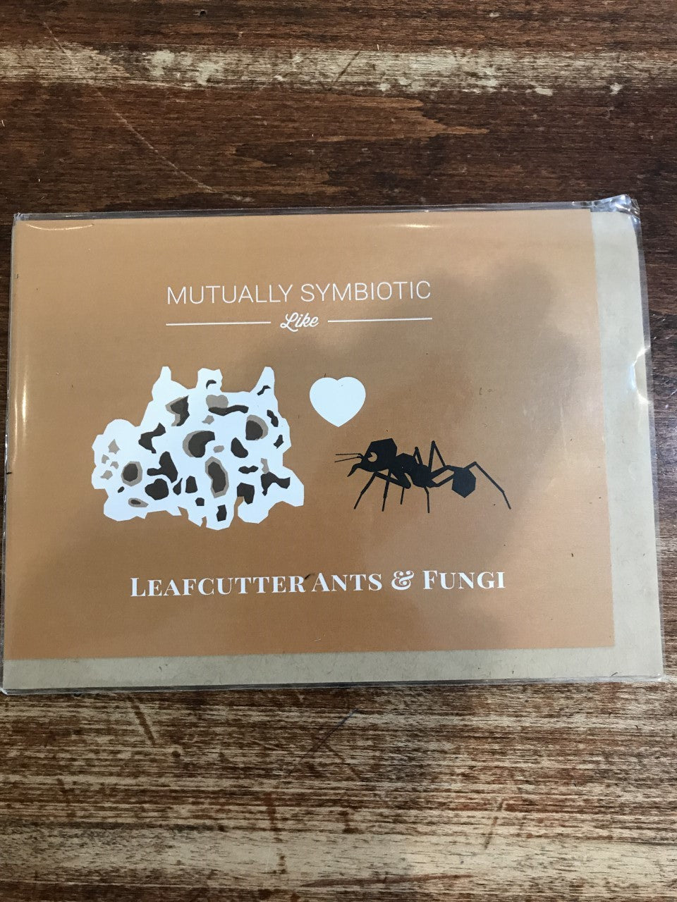 Cognitive Surplus Blank/Love Card-Symbiosis: Leafcutter Ant