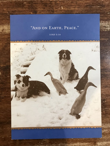 Shannon Martin Holiday Card-And On Earth, Peace