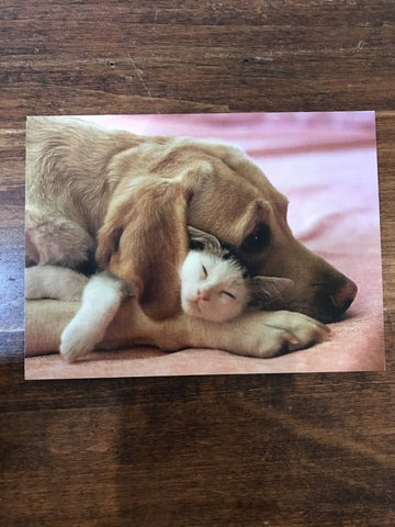 Retrospect Valentine's Day Card-Dog and Cat