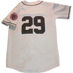 adrian beltre fort worth black panthers jersey (1402906509381)