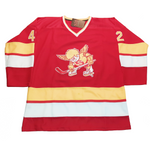 Minnesota Fighting Saints Jersey